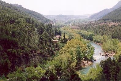 POBLADO RURAL en venta de siete casas y varios anexos en un paraje natural precioso, verde e imposible de mejorar al lado del río Segre.